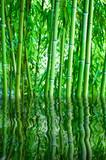 Fototapete Wasser - Spieglung - Hintergrund