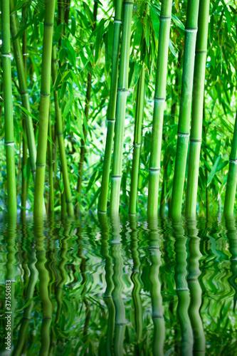 fototapete bambus wassersport hintergrund wellness massage pixteria. Black Bedroom Furniture Sets. Home Design Ideas