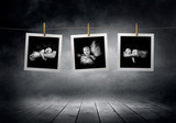 Images collection  line of newborn babys photographs
