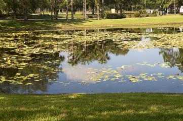 Bueno Vista Orlando, Florida USA