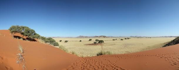 Panorama Sossusvlei