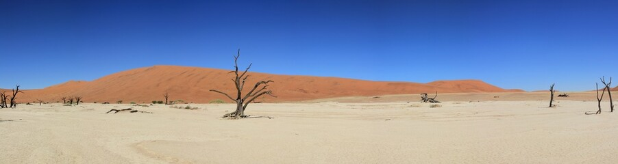 Panorama Deadvlei