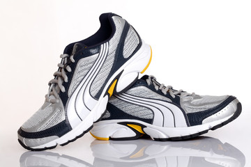 elegant sport shoe on a white background