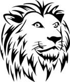Fototapety Lion's head
