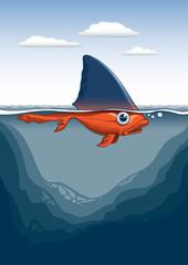 Köpekbalığı japonbalığı
