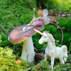 petite fée et dame licorne