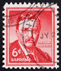 Postage stamp USA 1954 Theodore Roosevelt