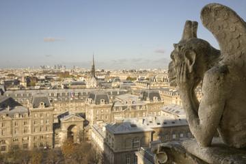 Gárgola de Notre Dame, Paris