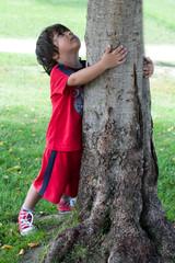 bambino guarda un albero