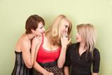 Beautiful young teen girls sharing gossip poster