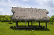 Seminole shelter in the Everglades Florida USA