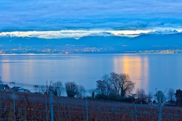 Dawn at a Swiss Vineyard
