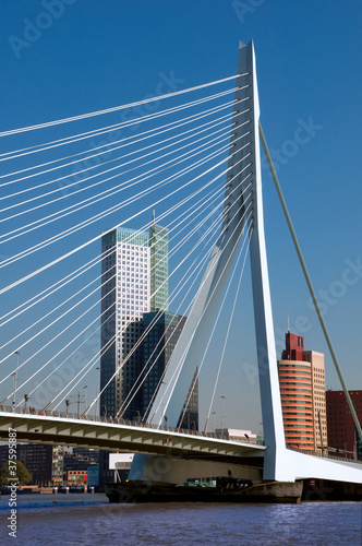 View of Erasmusbrug over Rotte river at Rotterdam - Netherlands