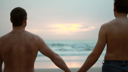Gay couple holding hands and looking at sunset by the sea