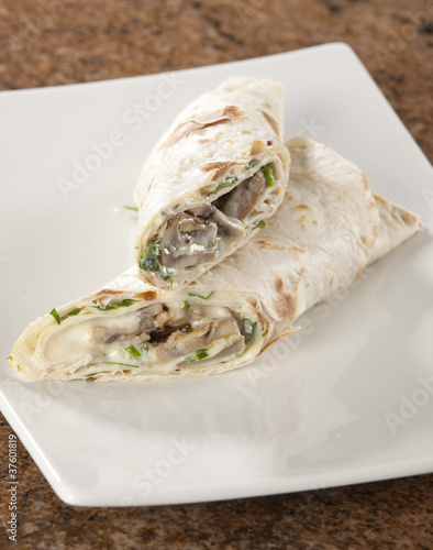Delicious chicken and mayonnaise with mushroom berrito or wrap.