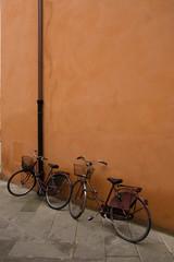 Bikes in pisa