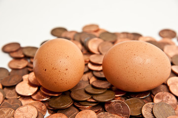 pennies and eggs