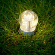 led lamp on the grass