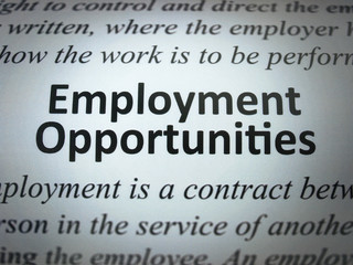 "Announcement of the ""Employment Opportunities"""