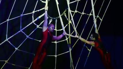 circo, acrobati