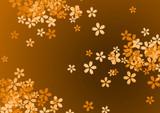 Fototapeta liść - roślina - Kwiat