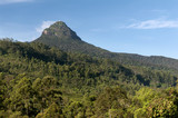 Mount Adam's Peak / Sri Pada