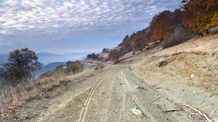 Cart road....