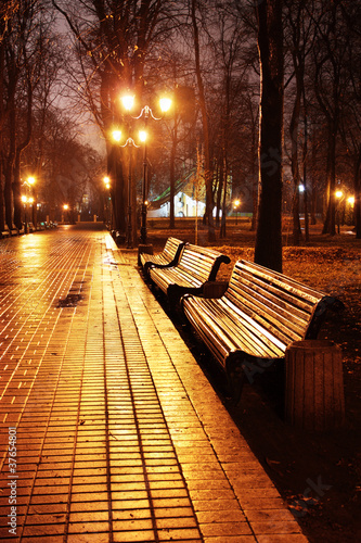 Mariinsky park at night