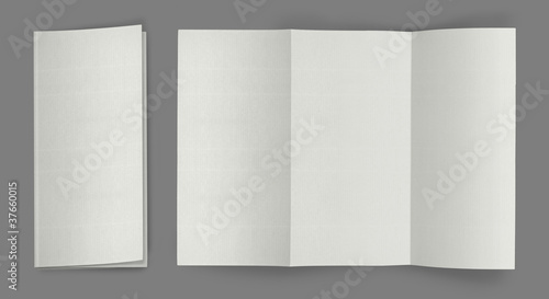 blank fold flyer brochure