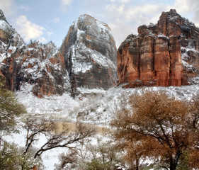 Winter Snow At Zion National Park, Utah