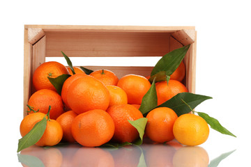 Ripe tasty tangerines with leaves in wooden box dropped isolated