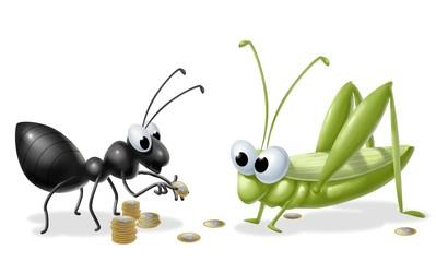 la cicala e la formica 2
