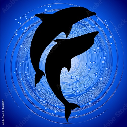 Delfini Coppia Amore in Blu-Dolphins Love in Ocean Background