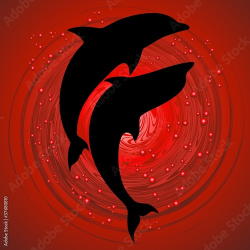 Delfini Coppia Amore in Rosso-Dolphins Love on Red Background