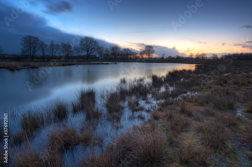 Lake in a moor, just before sunrise.