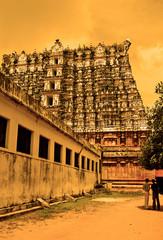 Trivandrum, Kerala - India
