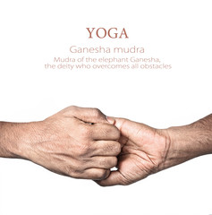 Yoga Ganesha mudra