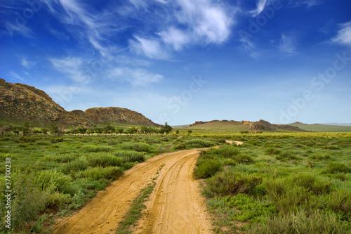 Chemin en Mongolie
