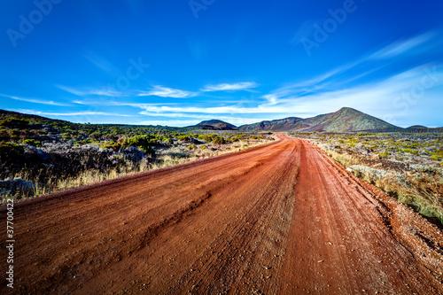 Route du volcan - Ile de La Réunion - 37700422
