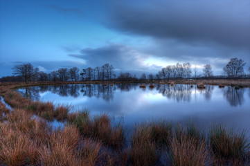 Pond on a moor, just before sunrise