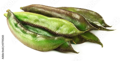 Fresh Indian bean