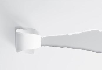 Aufriss - Papier