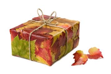 A gift covered with leaves / Un cadeau recouvert de feuilles
