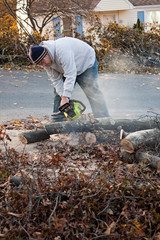Man Cuts Tree Limbs with a Chainsaw