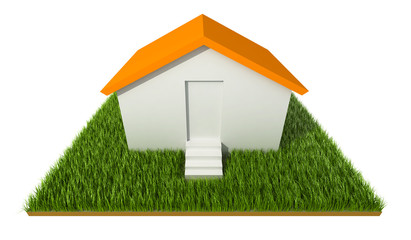 3D House on grass