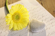 Steinherz mit gelber Blume