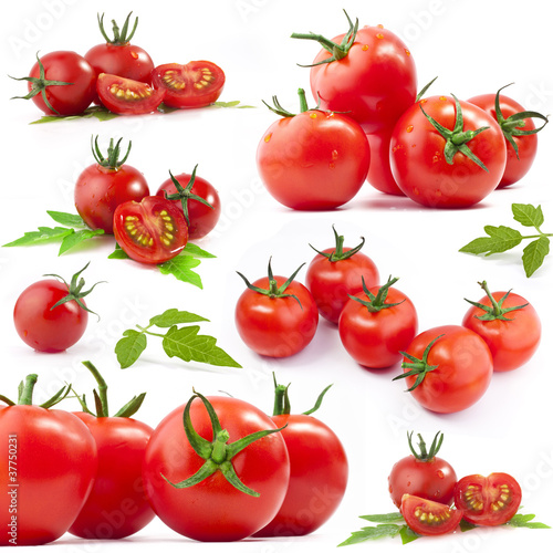 Tomatos collection