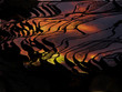 Sonnenuntergang Reisterrassen China