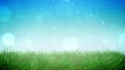 Sunny grass loop
