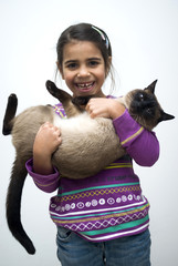 Little girl with siamese cat